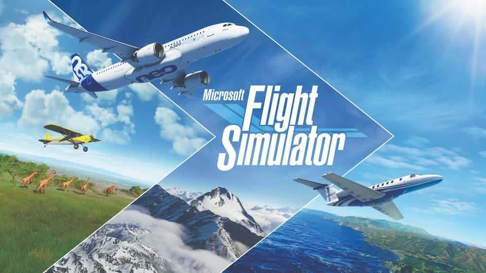 En İyi Simülasyon Oyunları Nelerdir?